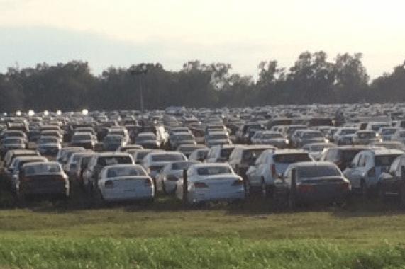 flooded cars from Hurricane Harvey