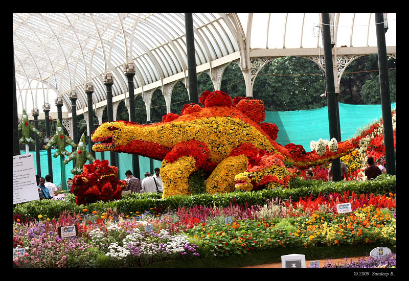 Lalbagh-flower-show-dinosaurs