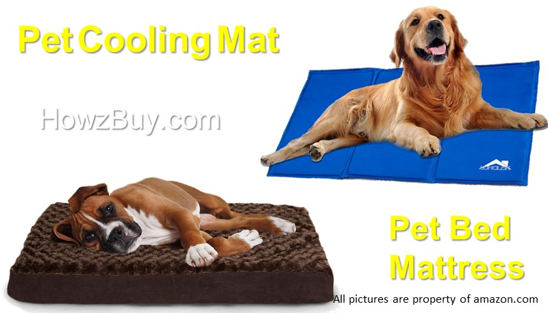 Pet Bed & Mattress for Dog/Cat