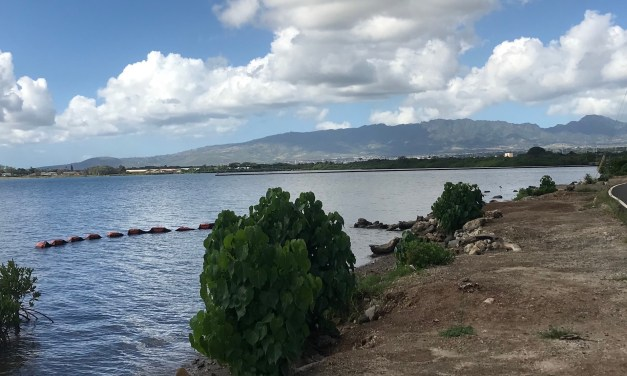 Pretty Scenery And Minor Trespassing Along The Pearl Harbor Bike Path