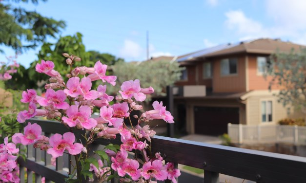 Could This Huge Tax Credit Help You Afford Your First Kapolei Home?