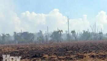El Ministerio de Medio Ambiente y Recursos Naturales informó hoy  la extinción del incendio forestal que afecto a más de 300 tareas de tierra, fuente externa