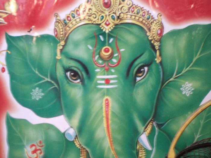 Elefantes Hindes Coloridos En Imgenes Para Descargar Hoy