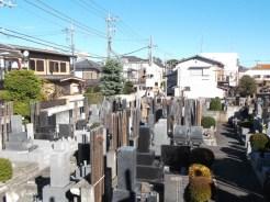 中道寺【日当たりの良い墓地】