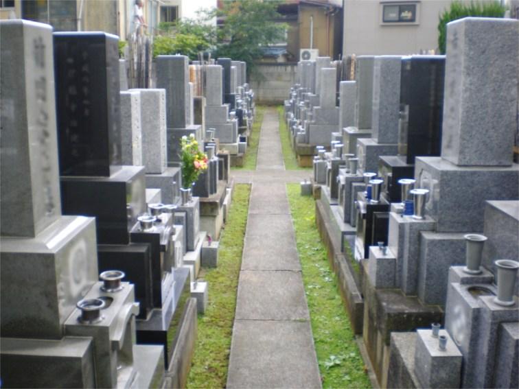 遍照寺 日当たり良好な墓地