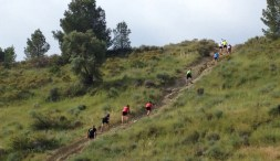 trail alborache 2015-2