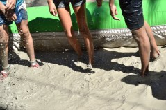 mud festival 2015-10