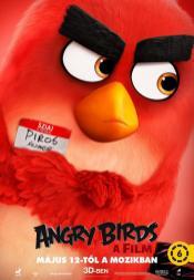 Angry_Birds_la_pel_cula-446630796-large
