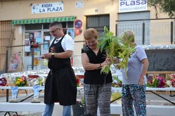 Inauguracion fiestas 2016-18