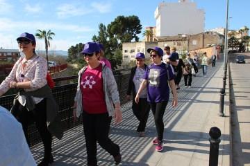 caminata solidaria 2017-11
