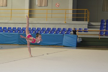 gimnasia (21)