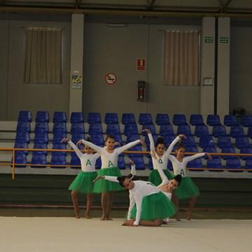 gimnasia (22)