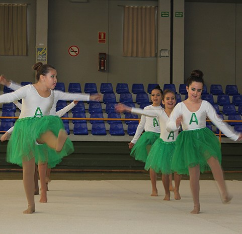 gimnasia (23)