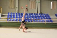 gimnasia (41)