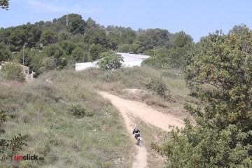 Cross County (19)