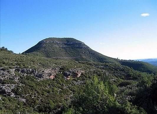 Yátova recibe una importante subvención para proteger el monte de la localidad
