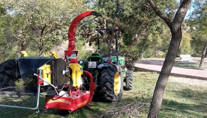 La Concejalía de Obras y Servicios Municipales de Buñol continúa con la limpieza y poda del arbolado tras los fuertes vientos