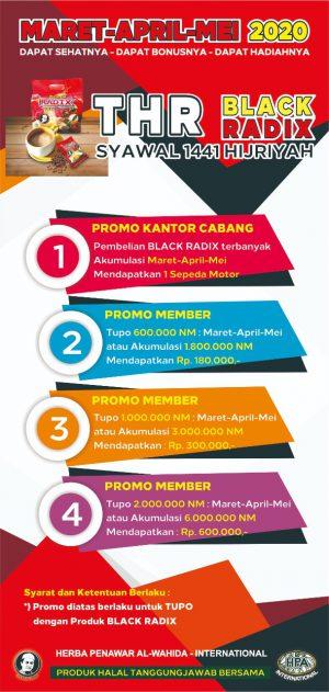 Promo BlackRadix