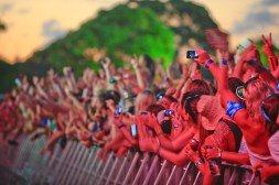 Crowd FMF13