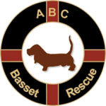 ABC Basset Hound Rescue, Inc.