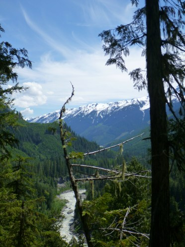 We hiked down a trail near a forestry bridge and hiked down to this view.