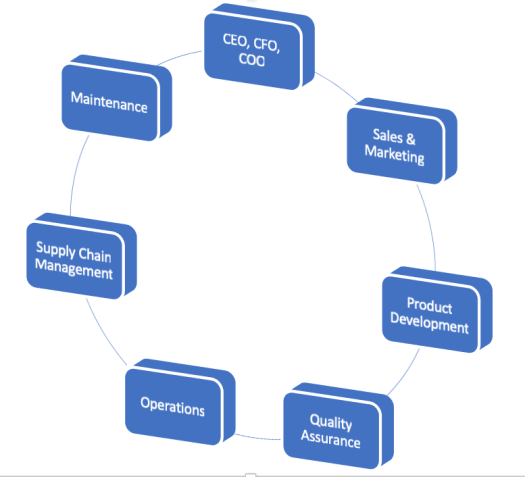 The chart lists 7 departments involved Holistic HPP Business Strategy (CEO, CFO, COO, Sales and Marketing, Product Development, Quality Assurance, Operations, Supply Chain Management, Maintenance)