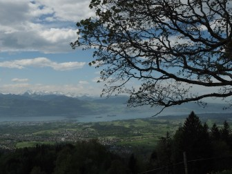 Richtung Rapperswil