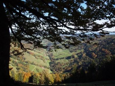 Blick in den Kanton Thurgau