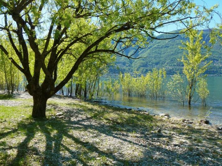 Hochwasser beim Ascona Lido