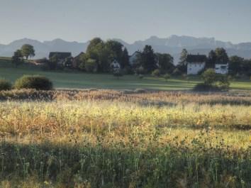 Morgenstimmung am Lützelsee