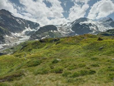 Sustenhorn - Steigletscher - Gwächtenhorn - Tierberg