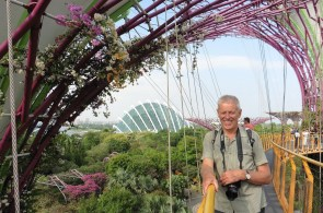Gardens by the Bay: Super Tree Grove Skyway II