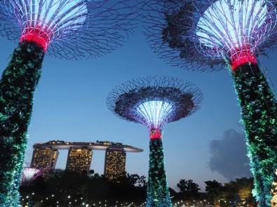 Gardens by the Bay: Super Trees Grove I
