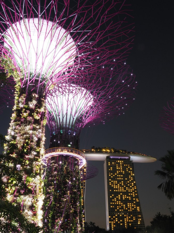 Gardens by the Bay: Super Trees Grove II