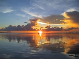 Florida 2000 06