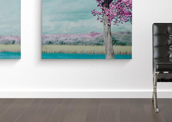 Image-canvas