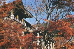 Japan, Kyoto in Color (3)
