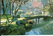 Japan, Kyoto in Color (7)