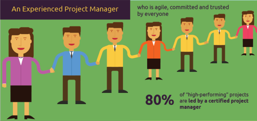 An Experienced Project Manager