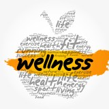 Promoting Health and Wellbeing in the Legal Sector