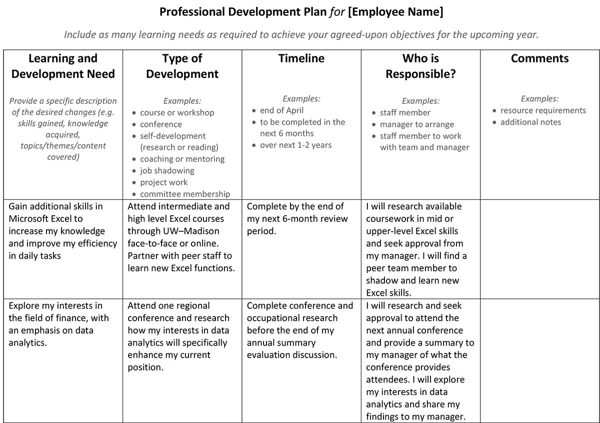 Software Developer Goals Examples
