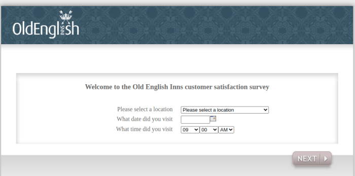 King Old English Survey