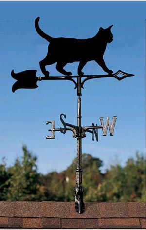 A purrrfect weather vane for Friday the 13th!