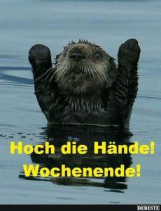 Hoch die Hände! Wochenende