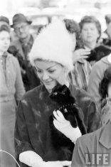 Кастинг чёрных котов (10)