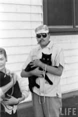 Кастинг чёрных котов (11)