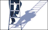 health and safety ladder