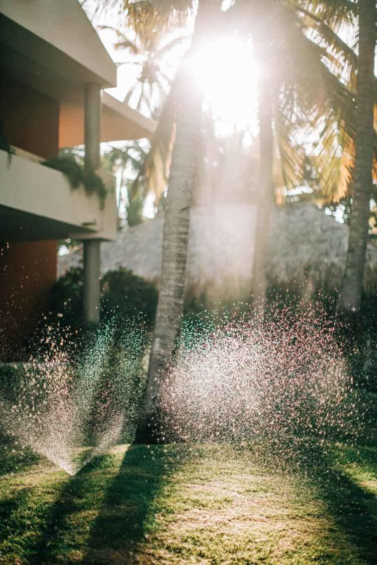 Lawn Sprinkler Inspection services