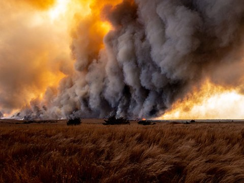 While emergency wildfire smoke regulations are in effect, Cal/OSHA is preparing permanent regulations that may affect more employers.