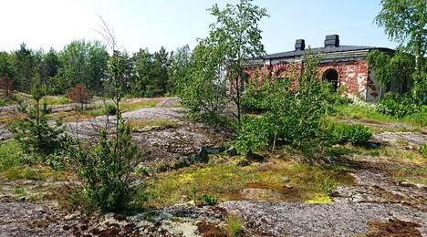 Vasikkasaari is located right in front of the center of Helsinki on Kruunuvuorenselä.